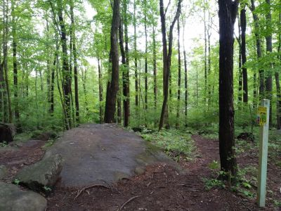 Boulderwoods Campground, Bootlegger's Cave, Hole 9 Tee pad