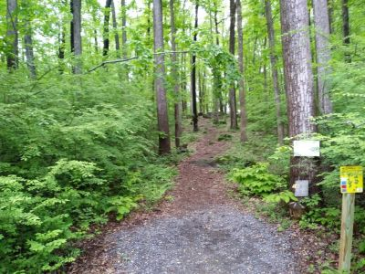 Boulderwoods Campground, Bootlegger's Cave, Hole 19 Tee pad