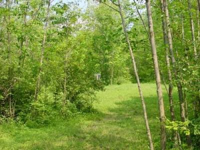 Oxbow Falls Park, Main course, Hole 17 Short approach