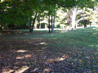 Joralemon Park, Main course, Hole 1 Tee pad