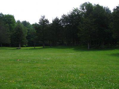 Joralemon Park, Main course, Hole 2 Tee pad