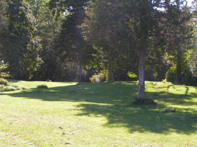 Joralemon Park, Main course, Hole 8 Long approach