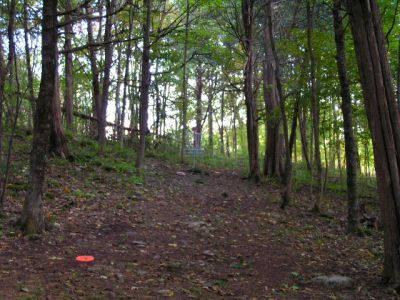 Joralemon Park, Main course, Hole 10 Short approach