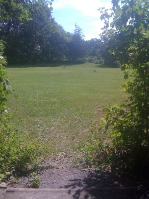 Joralemon Park, Main course, Hole 7 Tee pad