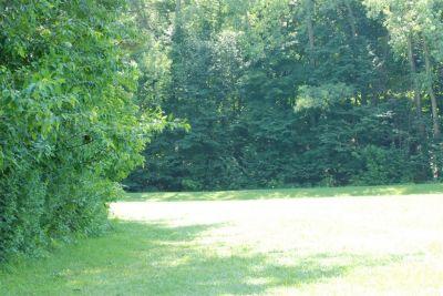 Ellison Park, Main course, Hole 8 Long tee pad