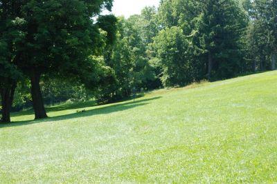 Ellison Park, Main course, Hole 6 Long tee pad