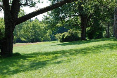 Ellison Park, Main course, Hole 1 Long tee pad
