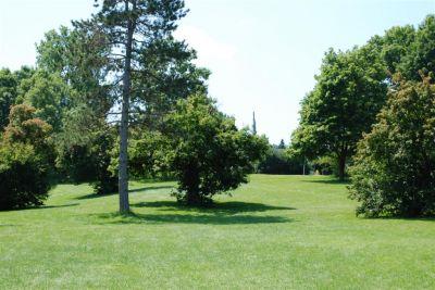 Ellison Park, Main course, Hole 2 Long tee pad