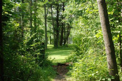 Churchville Park, Main course, Hole 13 Tee pad