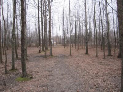 Basil Marella Park, Main course, Hole 1 Midrange approach