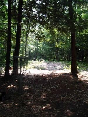 Hyzer Creek, Main course, Hole 6 Reverse (back up the fairway)