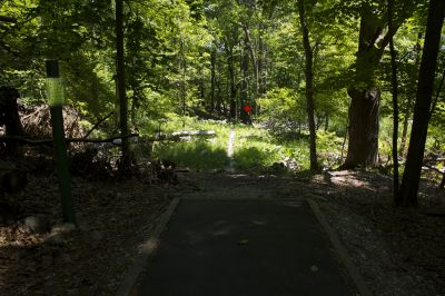 FDR State Park, Main course, Hole 7 Tee pad