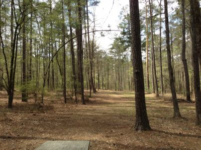 International Disc Golf Center, WR Jackson Memorial, Hole 7 Tee pad