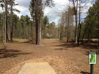 International Disc Golf Center, WR Jackson Memorial, Hole 8 Tee pad