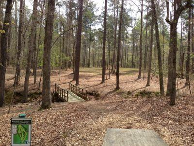 International Disc Golf Center, WR Jackson Memorial, Hole 6 Tee pad