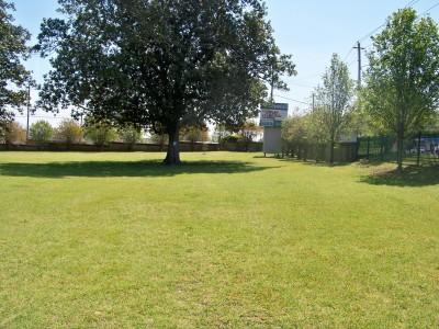 Lake Olmstead Park, Main course, Hole 1 Midrange approach
