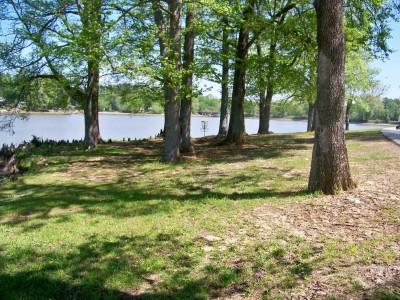 Lake Olmstead Park, Main course, Hole 7 Midrange approach