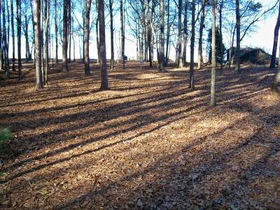 Herman C. Michael Park, Main course, Hole 10 Midrange approach