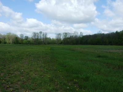 Heritage Park, Heritage Park DGC, Hole 15 Middle tee pad