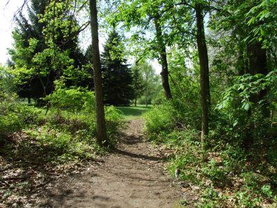 Heritage Park, Heritage Park DGC, Hole 8 Middle tee pad