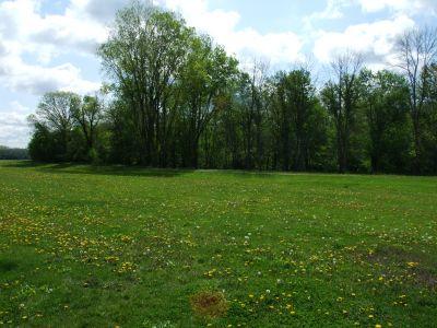 Heritage Park, Heritage Park DGC, Hole 12 Middle tee pad