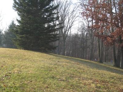 Heritage Park, Heritage Park DGC, Hole 4 Short approach