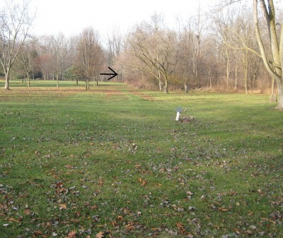 Heritage Park, Heritage Park DGC, Hole 7 Long tee pad