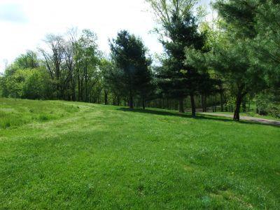 Heritage Park, Heritage Park DGC, Hole 5 Middle tee pad
