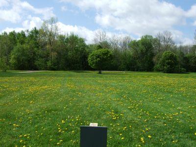 Heritage Park, Heritage Park DGC, Hole 17 Middle tee pad