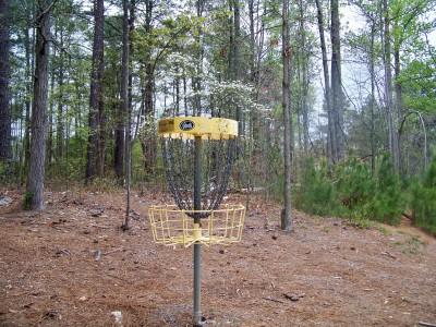 Deer Lick Park, Main course, Hole 13 Putt