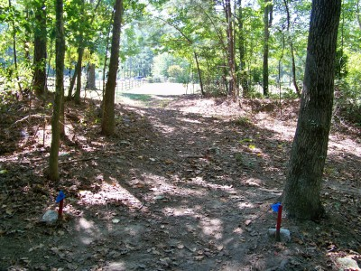 Deer Lick Park, Main course, Hole 6 Tee pad