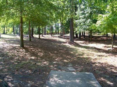 Deer Lick Park, Main course, Hole 7 Tee pad