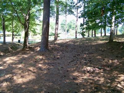 Deer Lick Park, Main course, Hole 2 Midrange approach