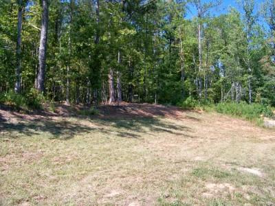 Deer Lick Park, Main course, Hole 13 Midrange approach