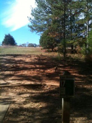Lake Russell, Main course, Hole 17 Tee pad