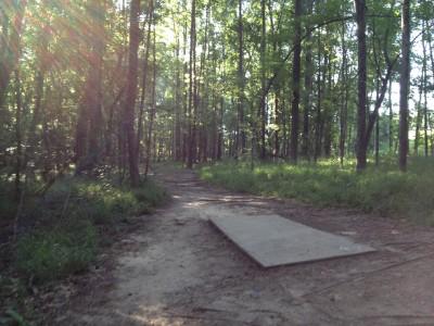 Patriot's Park, Main course, Hole 13 Tee pad
