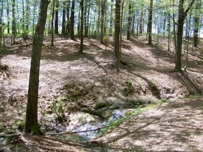 Patriot's Park, Main course, Hole 10 Midrange approach