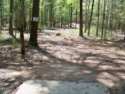 Patriot's Park, Main course, Hole 10 Tee pad