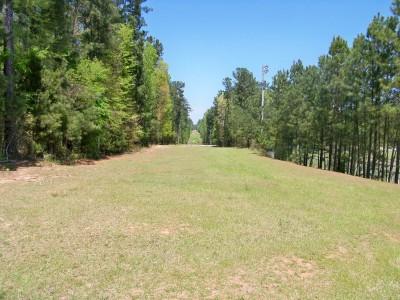 Patriot's Park, Main course, Hole 4 Long approach