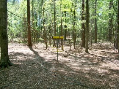 Patriot's Park, Main course, Hole 7 Putt