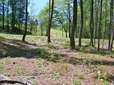 Patriot's Park, Main course, Hole 15 Midrange approach