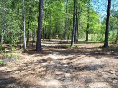 Patriot's Park, Main course, Hole 8 Midrange approach