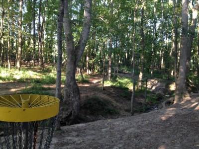 Patriot's Park, Main course, Hole 14 Reverse (back up the fairway)