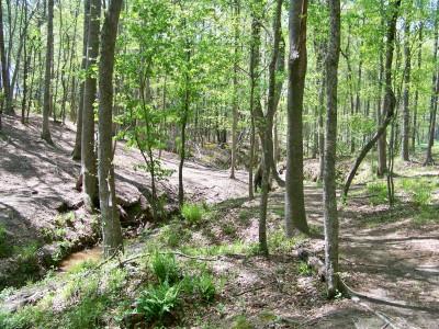 Patriot's Park, Main course, Hole 14 Midrange approach