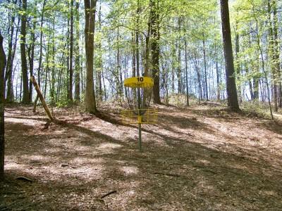 Patriot's Park, Main course, Hole 10 Putt