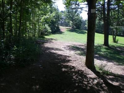 Oregon Park, Main course, Hole 3 Short tee pad