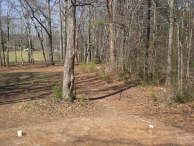 Oregon Park, Main course, Hole 10 Reverse (back up the fairway)