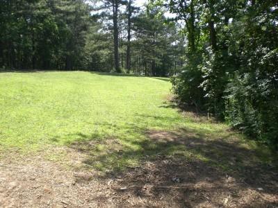 Oregon Park, Main course, Hole 3 Long approach