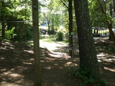 Oregon Park, Main course, Hole 11 Reverse (back up the fairway)
