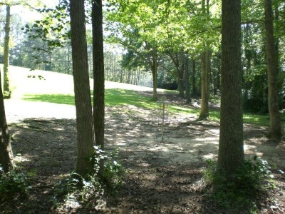 Oregon Park, Main course, Hole 12 Reverse (back up the fairway)